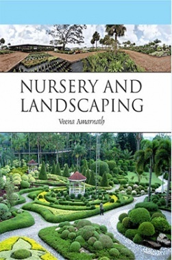 Nursery And Landscaping