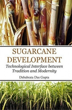 Sugarcane Development : Technological Interface between Tradition and Modernity