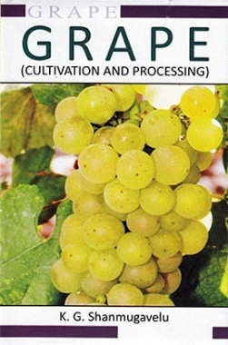 Grape Cultivation And Processing