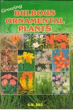 Growing Bulbous Ornamental Plants