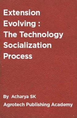 Extension Evolving : The Technology Socialization Process