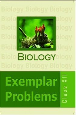 NCERT Exemplar Problems Class XII Biology
