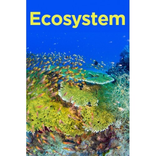 ecology and ecosystem notes pdf