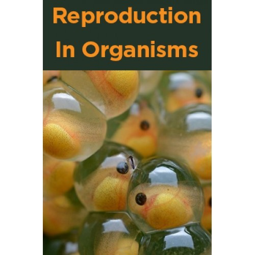reproduction in organisms Unlike sexual reproduction, which requires genetic material from two parent organisms in order to create an offspring, asexual reproduction occurs when a single organism reproduces without the genetic input of another because of this, a single individual organism is able to produce a nearly exact.