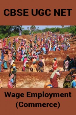 Cbse ugc net wage employment commerce by panel of experts pdf cbse ugc net wage employment commerce fandeluxe Choice Image