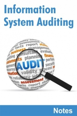 auditing standards pdf free download