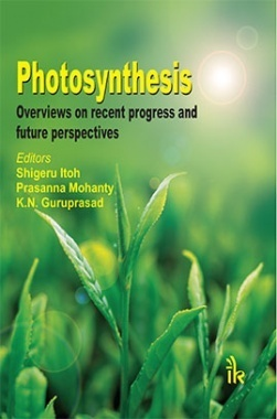 Photosynthesis : Overviews on Recent Progress and Future Perspectives