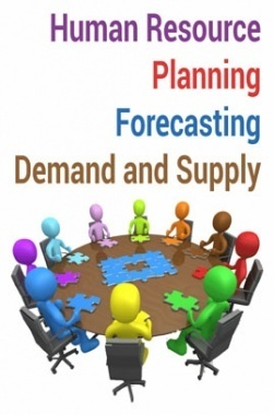Human Resource Planning Forecasting Demand and Supply