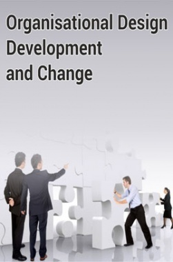 Organisational Design Development and Change