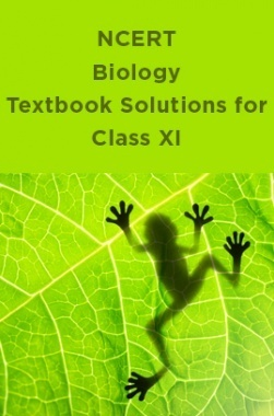 NCERT Biology Textbook Solutions for Class XI