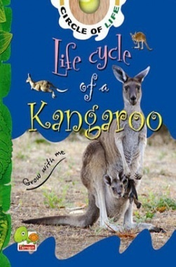 Circle of Life : Life Cycle of a Kangaroo