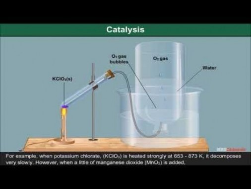 Class 12 Chemistry - Catalysts And Catalysis Video by MBD Publishers