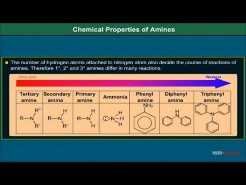 Class 12 Chemistry - Chemical Properties Of Amines Video by MBD Publishers