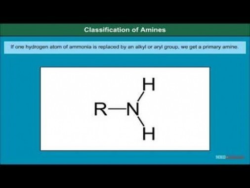 Class 12 Chemistry - Classification Of Amines Video by MBD Publishers