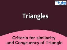Class 10 Mathematics - Criteria For Similarity And Congruency Of Triangle Video by Lets Tute