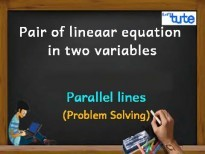 Pair Of Linear Equations In Two Variables - Parallel Lines - PS Video By Lets Tute