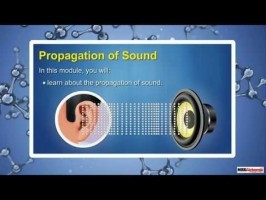 Class 9 Science - Propagation Of Sound Video by MBD Publishers