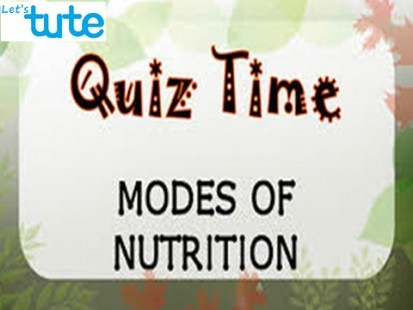 Class 9 Science - Quiz Time - Modes Of Nutrition Video by Let's tute