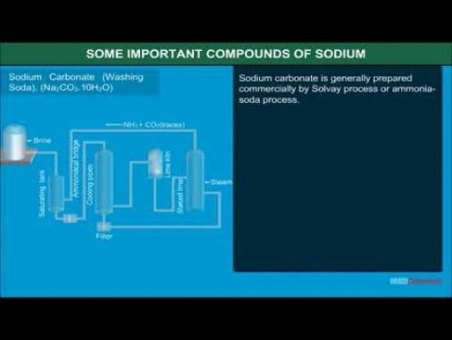 Class 11 Chemistry - Some Important Compounds Of Sodium Video by MBD Publishers
