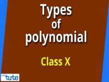 Class 10 Mathematics - Types And Zeros Of Polynomials Video by Lets Tute