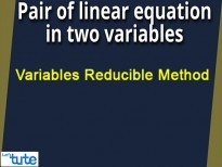 Pair Of Linear Equations In Two Variables - Variables Reducible Method Video By Lets Tute