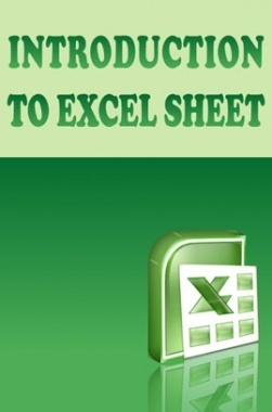 Introduction to Excel Sheet